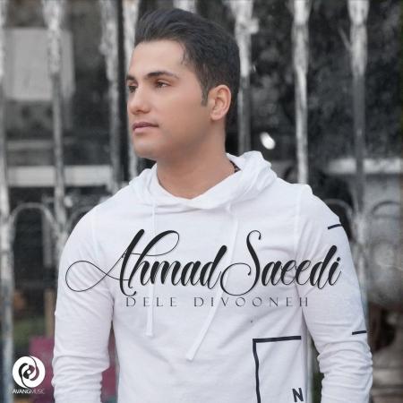 احمد سعیدی – دل دیوونه