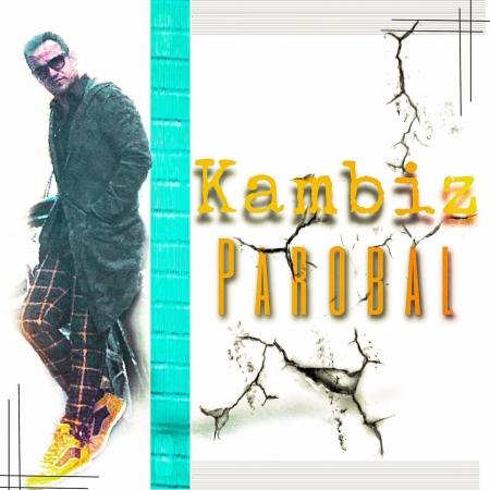 کامبیز – پروبال